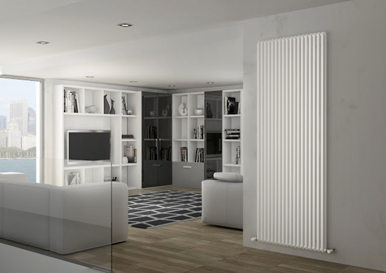 max vertical radiator double